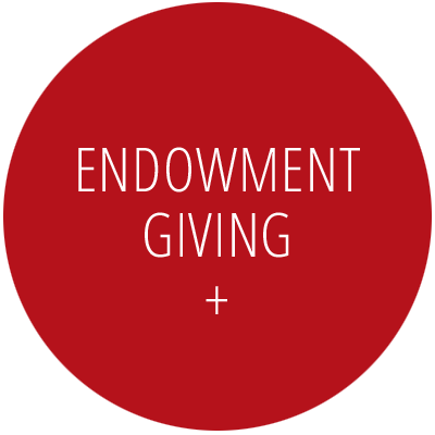 Endowment Giving