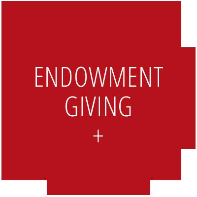 Endowment Giving